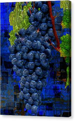 Touch Of The Grape Canvas Print by Jack Zulli