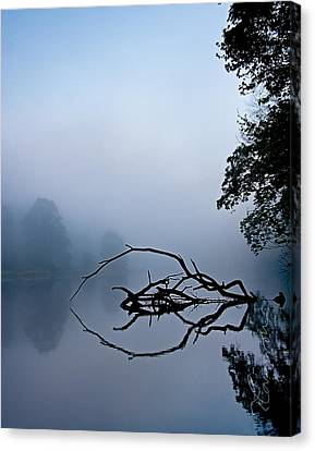 Canvas Print featuring the photograph Touche by Tom Cameron