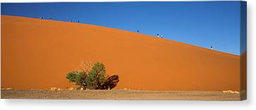Tourists Climbing Up A Sand Dune, Dune Canvas Print by Panoramic Images