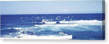 Tourists Windsurfing, Hookipa Beach Canvas Print