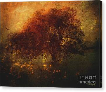 Canvas Print featuring the photograph Toward A Secret Sky ... by Chris Armytage