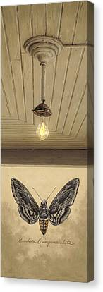 Toward The Light Canvas Print by Ron Crabb