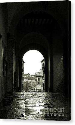 Towards Freedom Canvas Print by Syed Aqueel