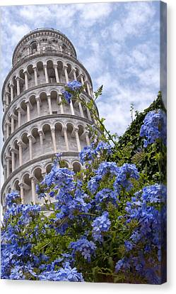 Tower Of Pisa With Blue Flowers Canvas Print