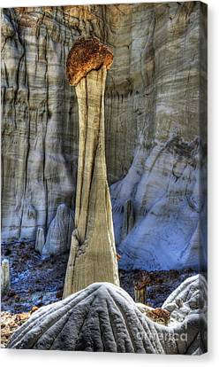 Tower Of Silence Utah Canvas Print by Bob Christopher