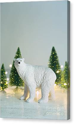 Toy Polar Bear With Little Trees And Lights Canvas Print