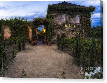 Napa Valley And Vineyards Canvas Print - Tra Vigne In Napa Valley by George Oze