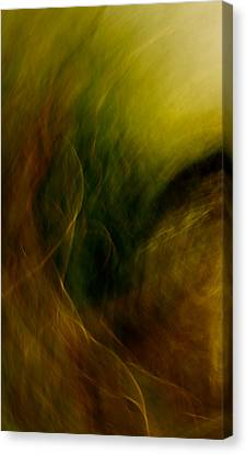 Yak Canvas Print - Traces Of The Wind by Mah FineArt