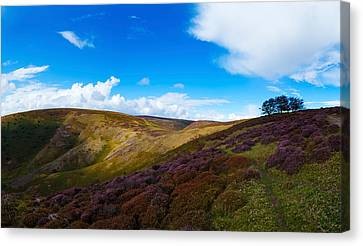 Track Between Round Hill And Cross Canvas Print by Panoramic Images