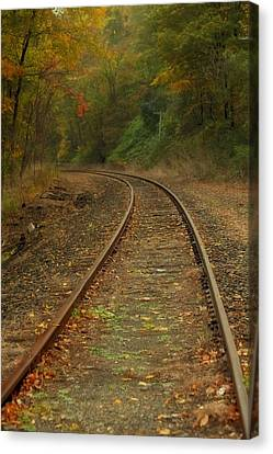 Tracking Thru The Woods Canvas Print