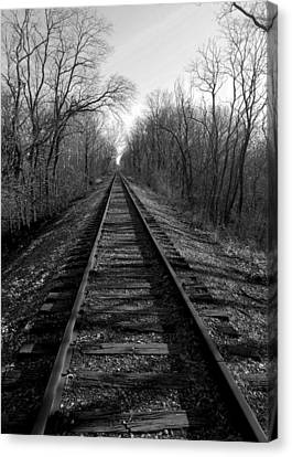 Tracks Canvas Print by Brian Amick
