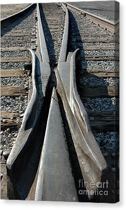 Tracks Canvas Print by Dan Holm