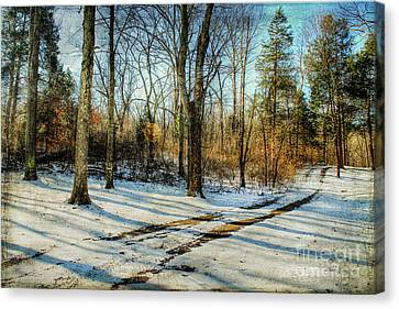 Tracks In The Snow Canvas Print by Darren Fisher