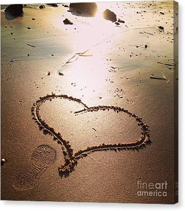 Tracks Of Love In The Sand Canvas Print by Stephanie  Varner