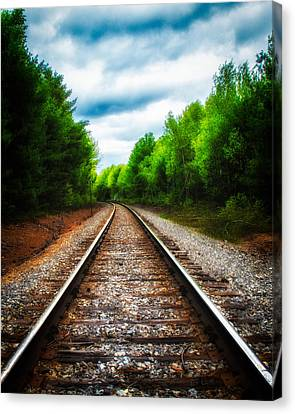 Tracks Through The Woods Canvas Print by Bob Orsillo