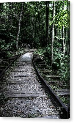 Tracks Thru Time Canvas Print by Doc Braham