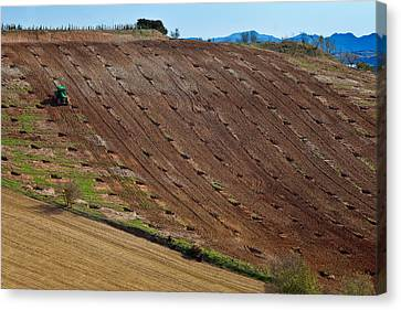Tractor Preparing A Field, Near Alhama Canvas Print by Panoramic Images