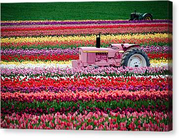 Canvas Print featuring the photograph Tractor Races by Brian Bonham