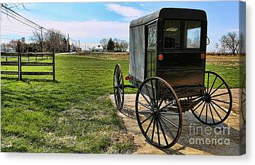 Traditional Amish Buggy Canvas Print