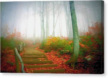 Trail In The Fog Forest Canvas Print by Lanjee Chee