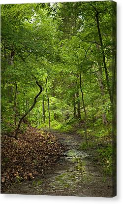 Trail Of Tears Mantle Rock Entrance Canvas Print