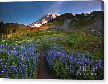 Alpine Canvas Print - Trail To Majesty by Mike Dawson