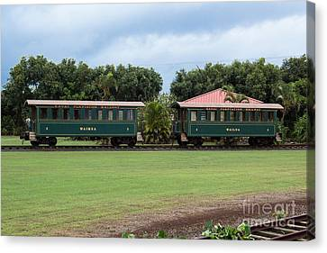 Train Lovers Canvas Print by Suzanne Luft