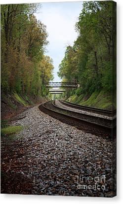 Train Tracks Canvas Print by Suzi Nelson