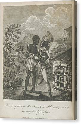 Haitian Canvas Print - Training Blood Hounds by British Library