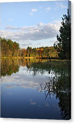 Tranquil Autumn Landscape Canvas Print by Christina Rollo
