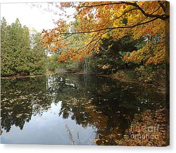 Tranquil Getaway Canvas Print by Brenda Brown