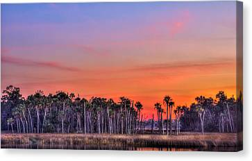 Tranquil Hammock Canvas Print by Marvin Spates