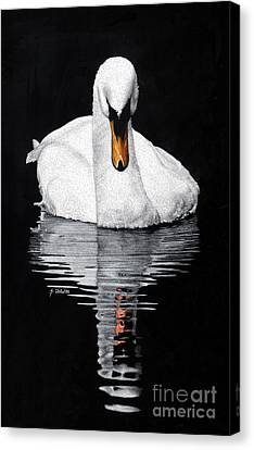 Tranquil Reflection Canvas Print by Sheryl Unwin