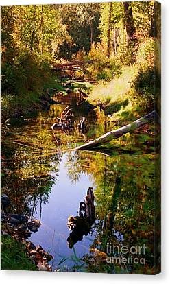 Tranquil Space Canvas Print by Kathy Bassett