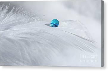 Tranquil Winter Day Canvas Print