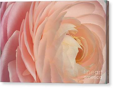 Tranquility 2012 Canvas Print by Art Barker