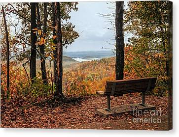 Canvas Print featuring the photograph Tranquility Bench In Great Smoky Mountains by Debbie Green