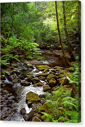 Mill Valley Canvas Print - Tranquility by Brian Tada