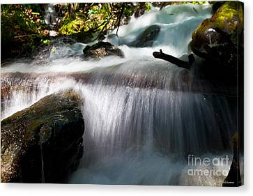 Tranquility  Canvas Print by Chris Heitstuman