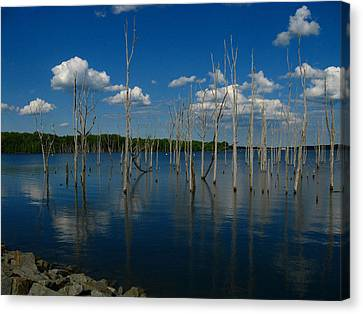 Canvas Print featuring the photograph Tranquility II by Raymond Salani III