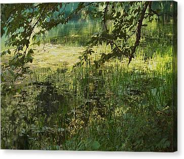 Tranquility Canvas Print by Mary Wolf