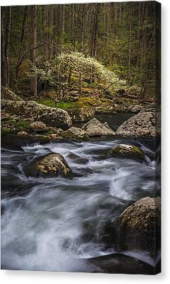 Tranquility Canvas Print by Mike Lang