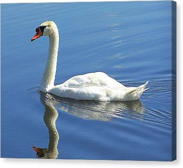Tranquility Canvas Print by Frozen in Time Fine Art Photography