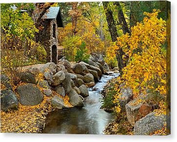 Tranquility Canvas Print by Tim Reaves