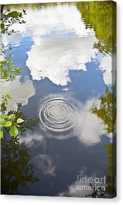 Raindrop Canvas Print - Tranquillity by Jan Bickerton