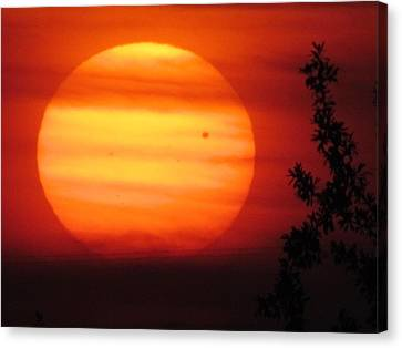 Transit Of Venus 2012 Canvas Print by Shannon Story