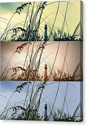 Transitions Canvas Print by Laurie Perry