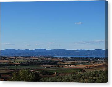 Trasimeno Viewpoint Canvas Print by Dorothy Berry-Lound