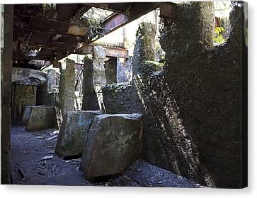 Treadwell Mine Interior Canvas Print by Cathy Mahnke