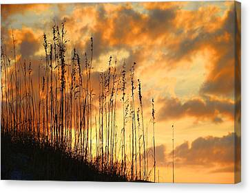 Treasure Island Sunset Canvas Print by Oscar Alvarez Jr